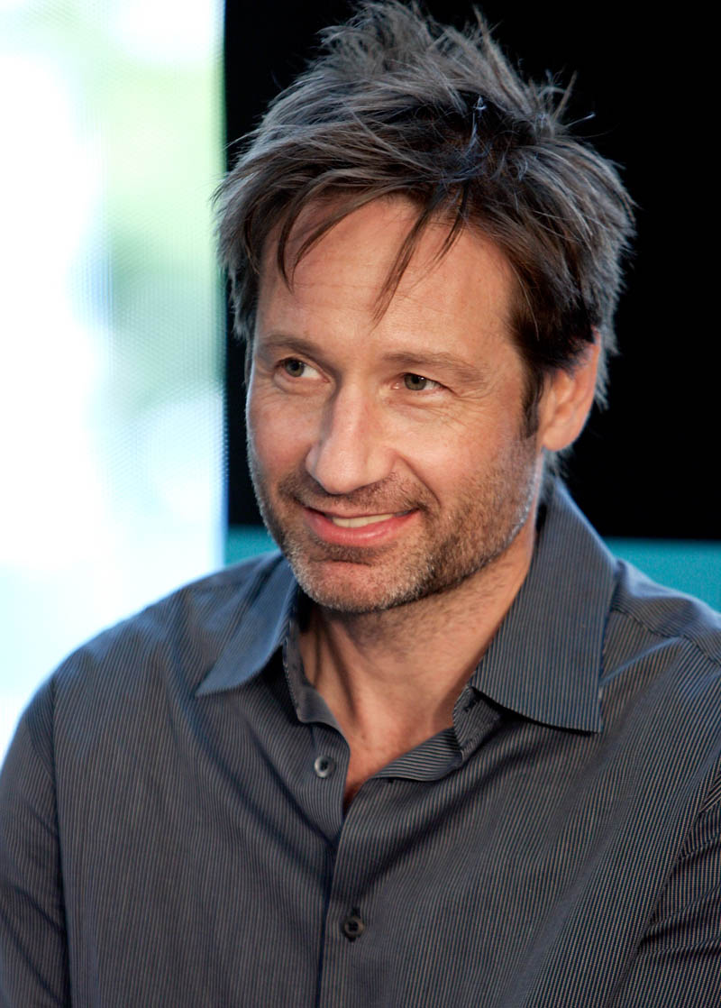 david duchovny photos tv series posters and cast