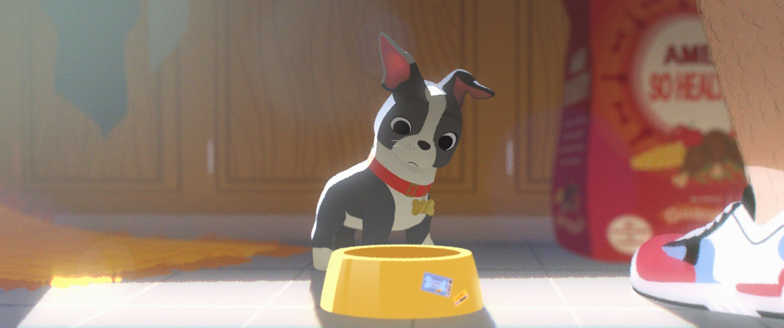 A scene from Feast:  Winston the puppy ponders his empty food dish.