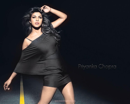 Priyanka Chopra Wallpaper in Don 2