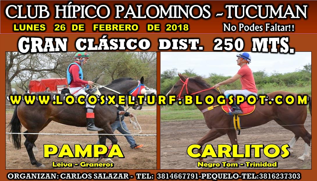 26-02-18-HIP. PALOMINOS-CLAS.