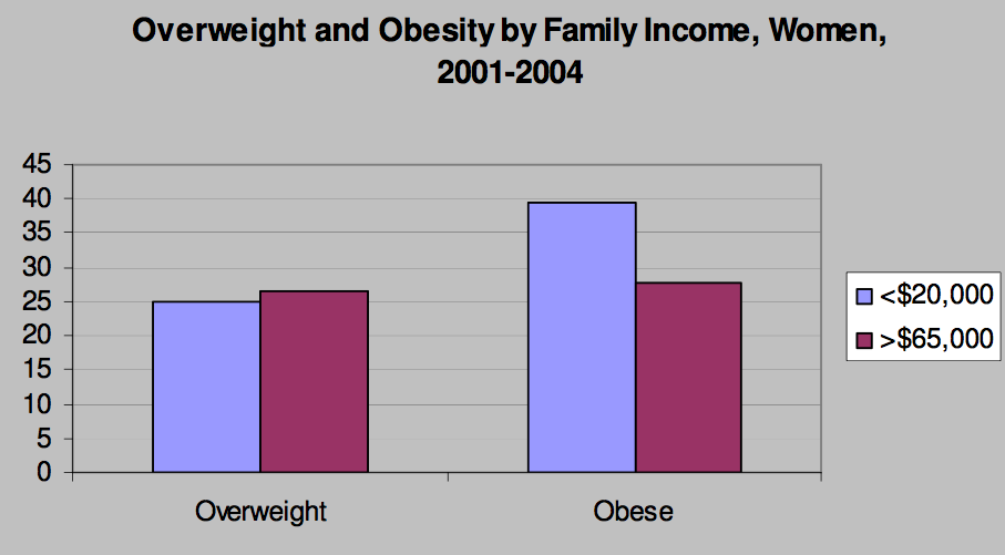 obesity and food stamps essay