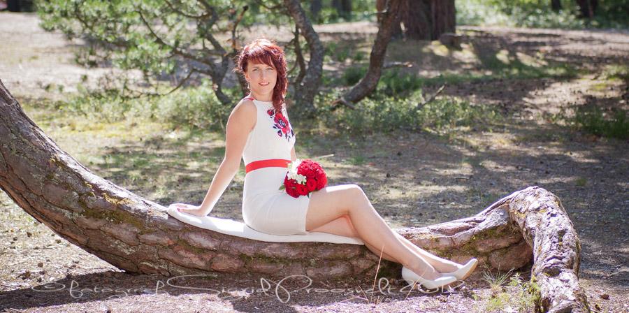 naine-puu-metsas-pulmafoto-pruut-pruutkimp