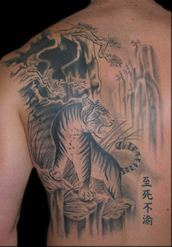 Tiger Tattoo Pictures