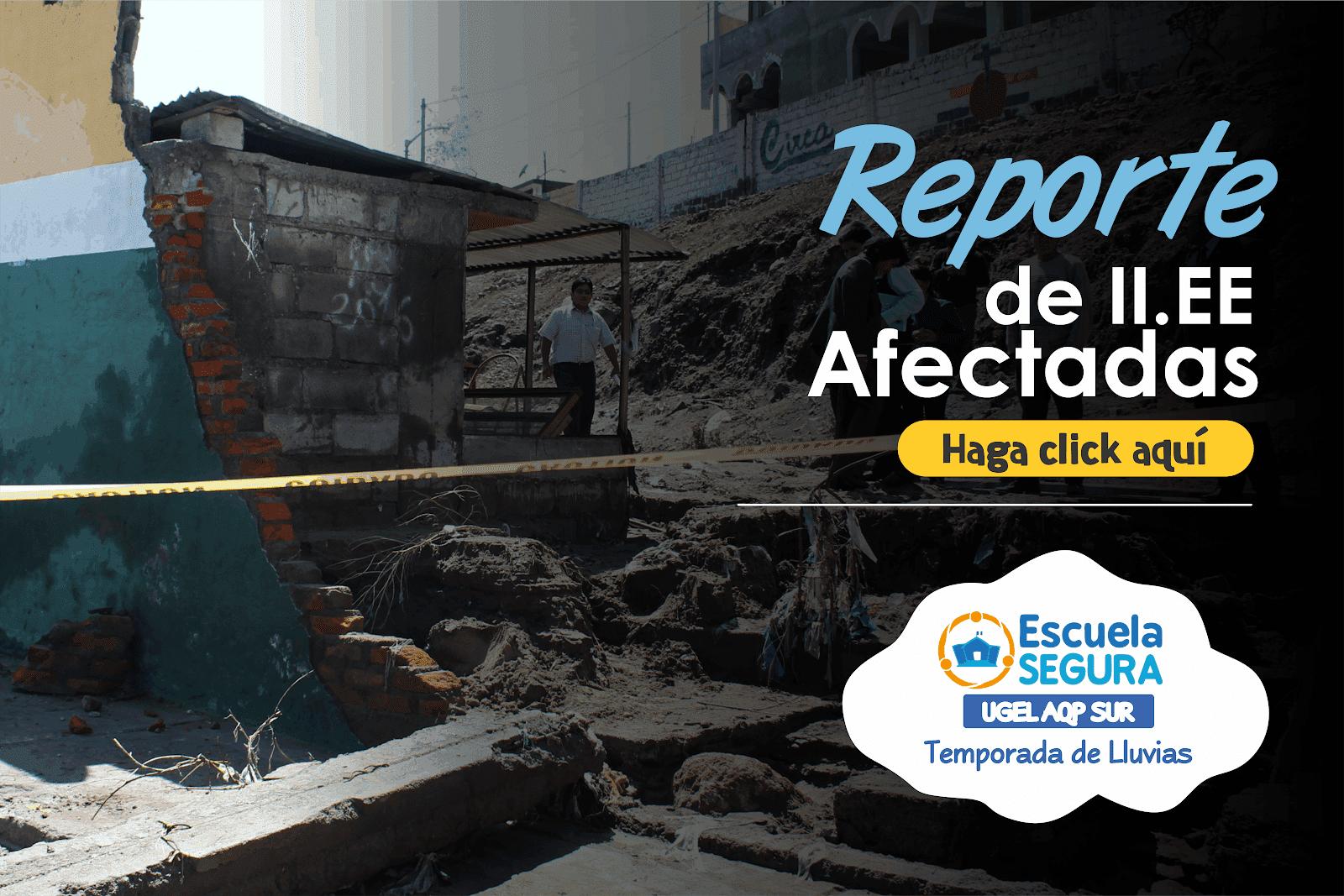 REPORTE DE ESTADO DE II.EE