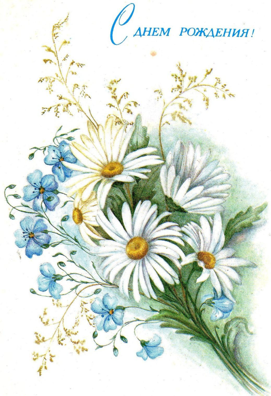 Открытка с полевыми цветами на день рождения 819
