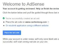 Iklan Google Adsense Kosong