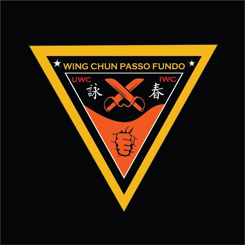 ESTILO  WING CHUN  EM  PASSO FUNDO