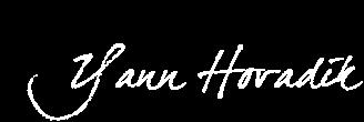YANN HOVADIK's fine art