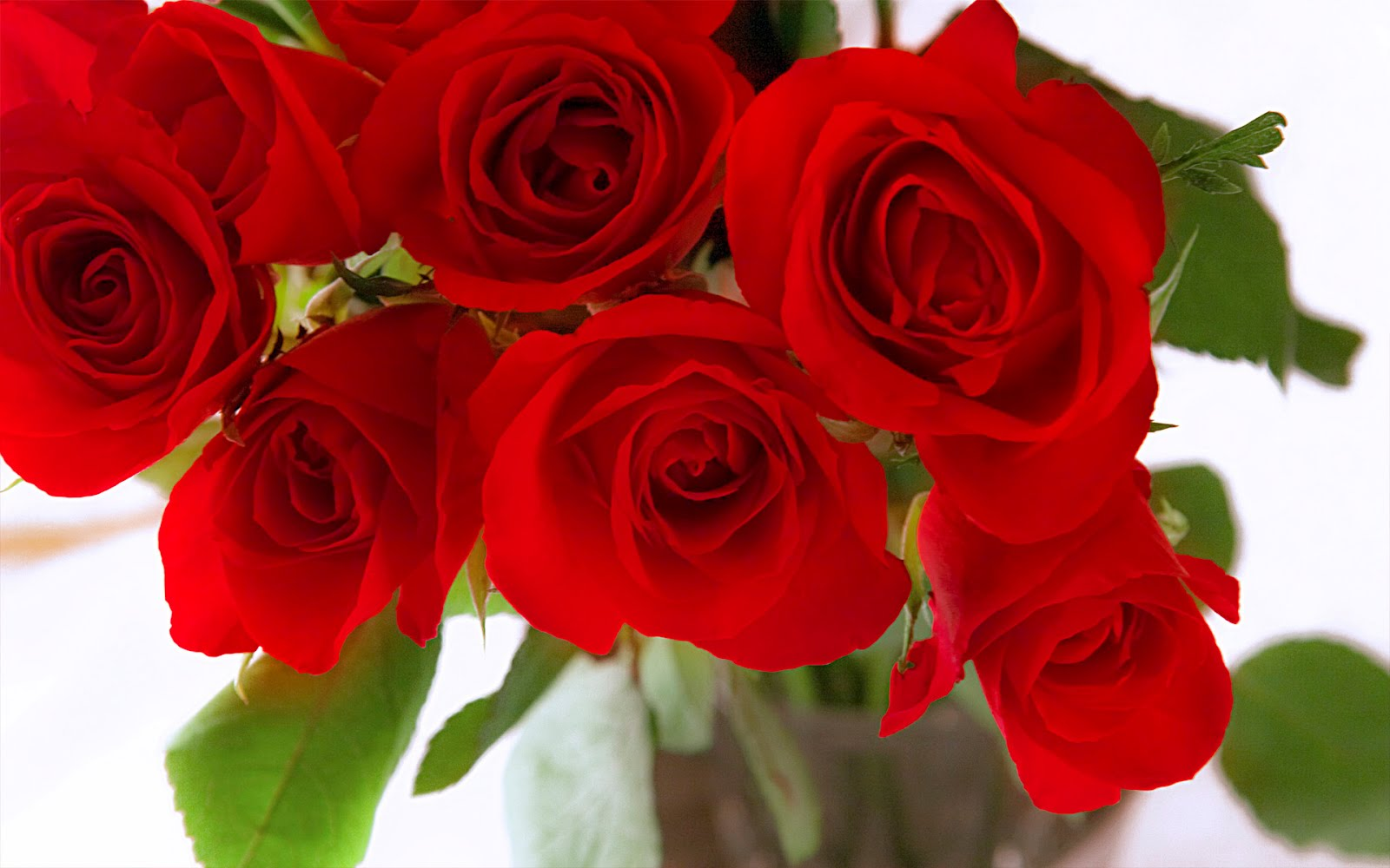 http://2.bp.blogspot.com/-TthuYhkbLfQ/T0dhWrqwzzI/AAAAAAAAC_A/hOkS2PQWvXY/s1600/hq-lovely-roses-wallpaper+bouquet.jpg