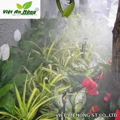 tưới phun sương vườn hoa,cây cảnh, hệ thống cỏ