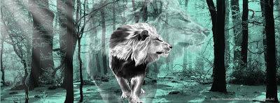 Couverture facebook lion