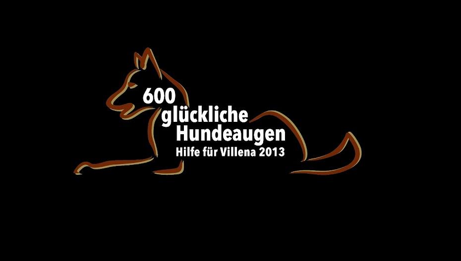 600 glückliche Hundeaugen