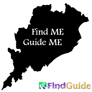 Odisha's Local Search Guide