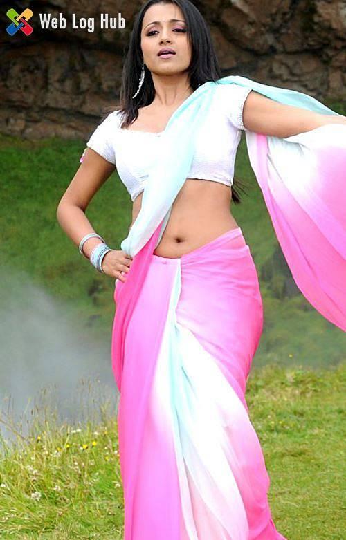 Trisha Krishnan Hot and Sexy Navel in Saree - Web Log Hub