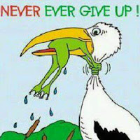 "bird eating frog ""never give up"""