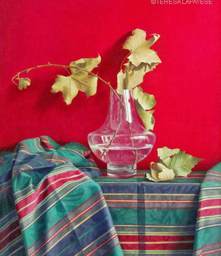 bodegones-con-plantas-y-flores
