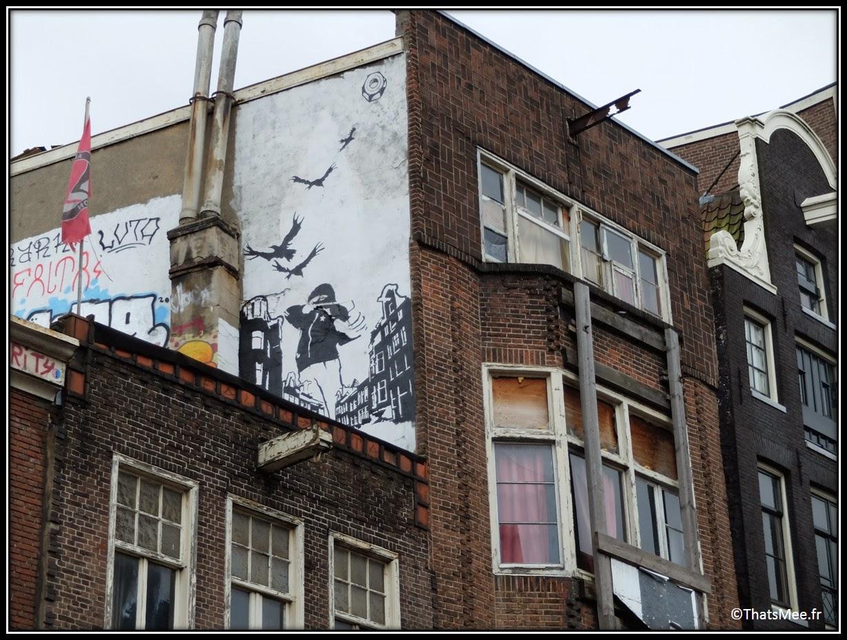 street art Amsterdam paparzzi vu !