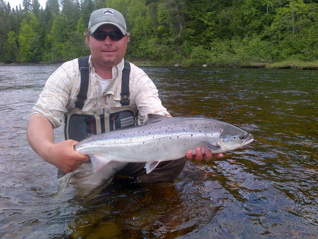 Rod 39 s miramichi fishing reports miramichi river salmon for Salmon river fishing reports