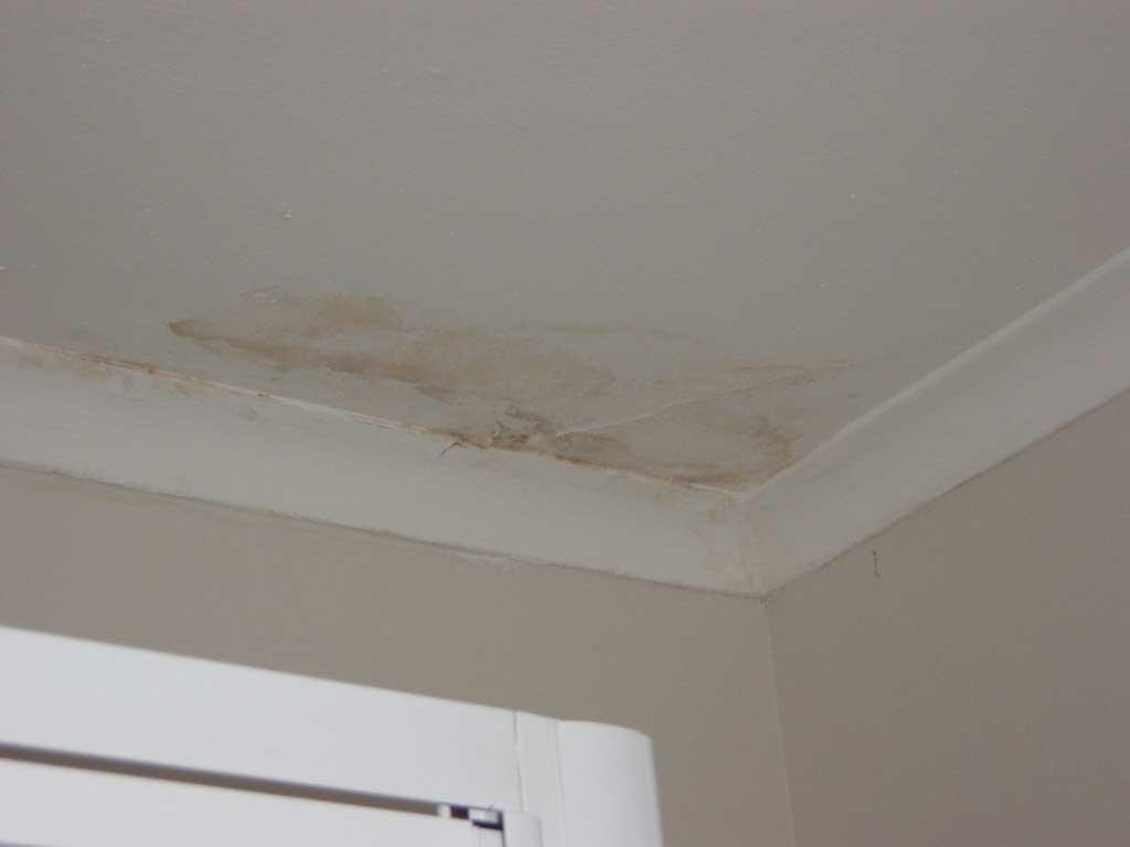 Leaking Ceiling Repair
