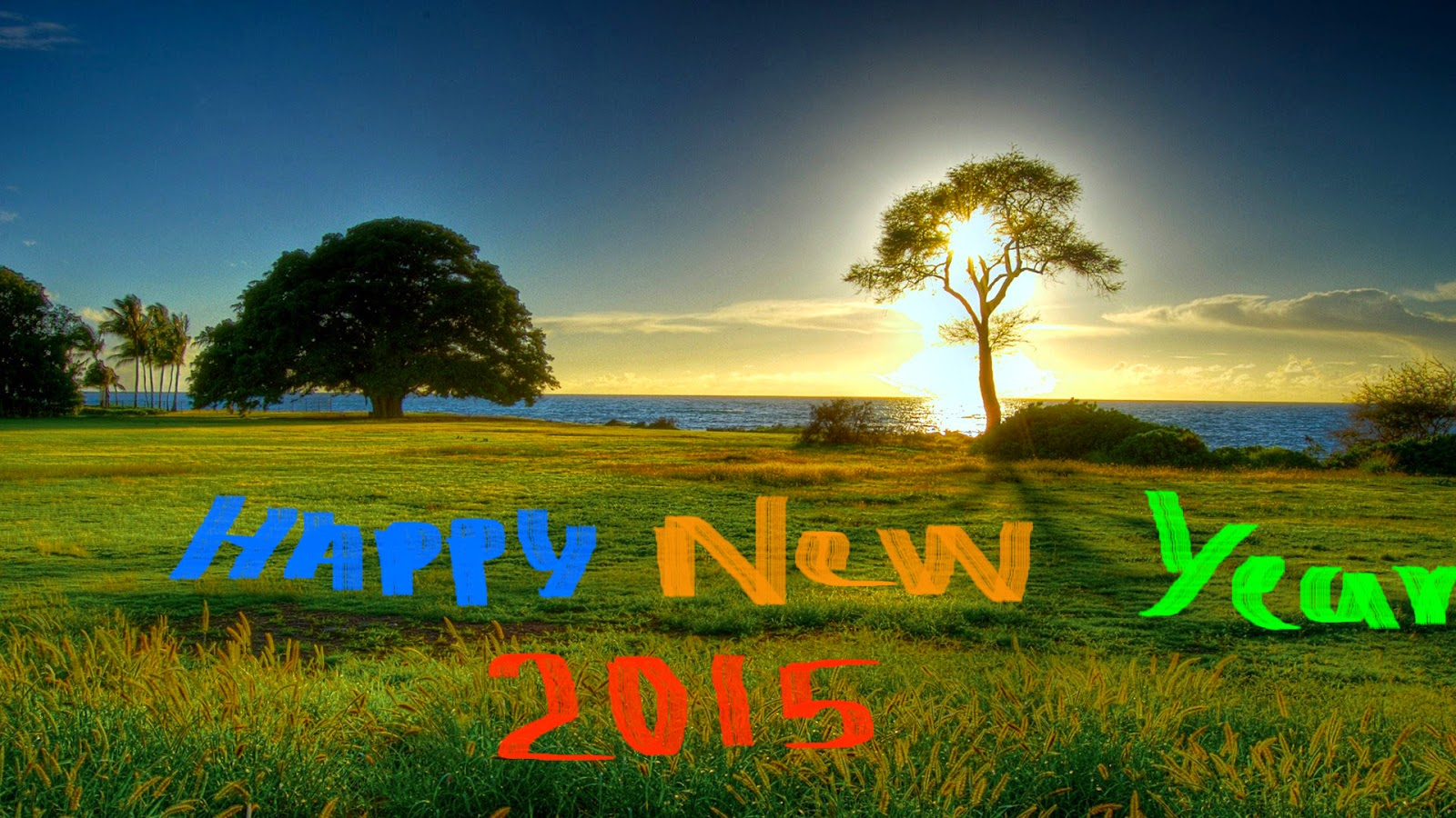 Greeting Happy New Year 2015 Pictures – Download Great Wallpapers
