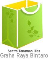 Sentra Tanaman Hias