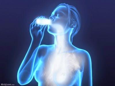Beneficios de los probióticos a la salud