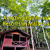12 Amazing Rainforest Resorts in Malaysia