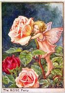 Hadas de las flores,página oficial