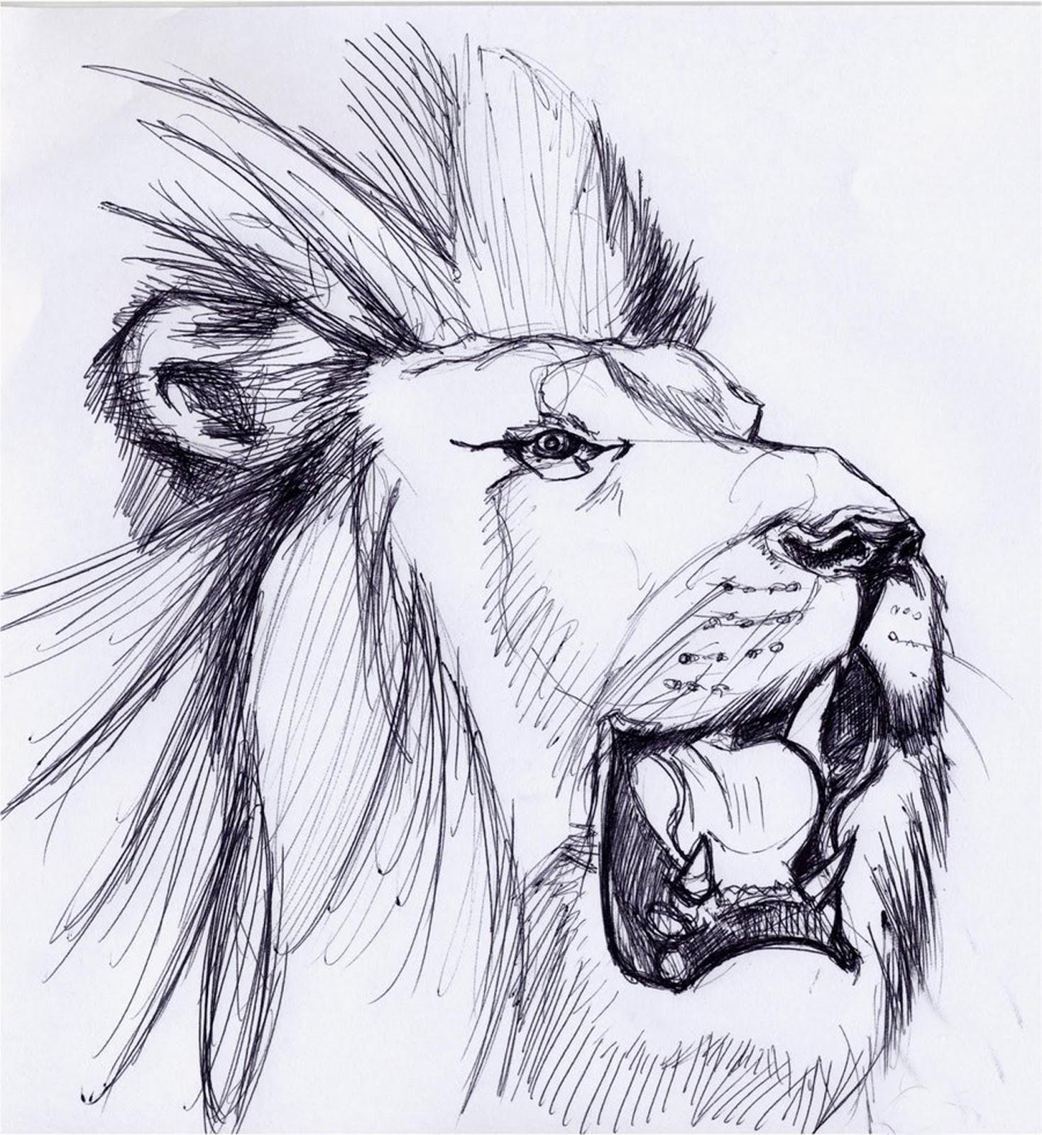 Roaring Lion Profile Tattoo Nolga Suzanne