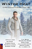 """Winter Heat"" M/M/M BDSM Anthology Nov. 2, 2012"