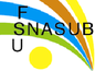 SNASUB FSU UNIVERSITE LILLE 2