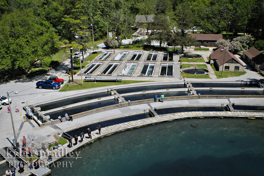 Kyle spradley photography blog roaring river state park for Fish hatchery missouri