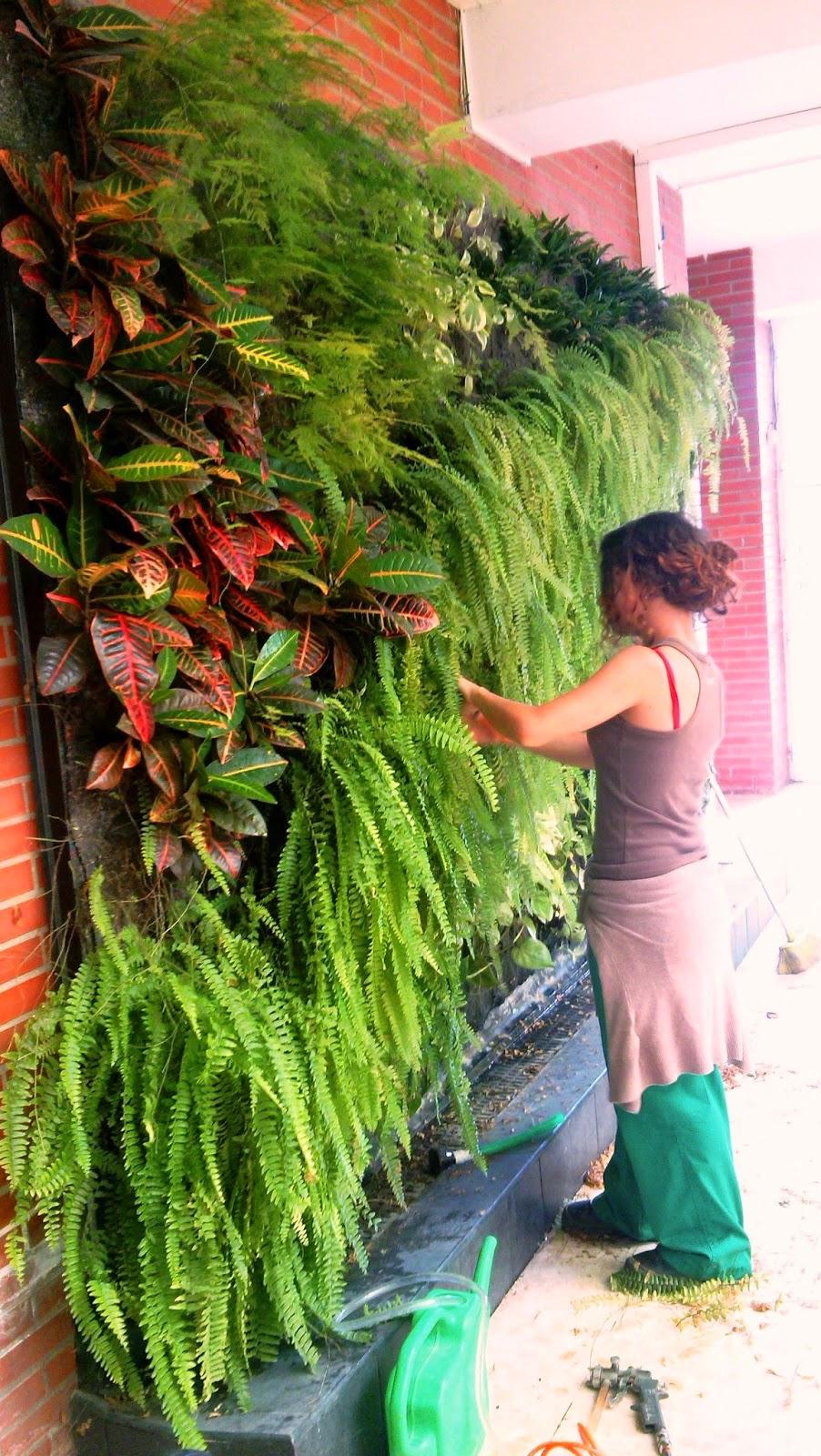 Jardines verticales y muros verdes ies heliche for Muros y fachadas verdes jardines verticales