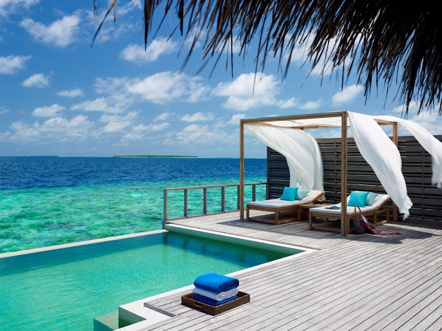 wildlife vacation dusit thani maldives