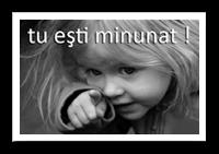 http://dincasadirectinrai.blogspot.ro/2015/06/maria-lazar-si-marta.html