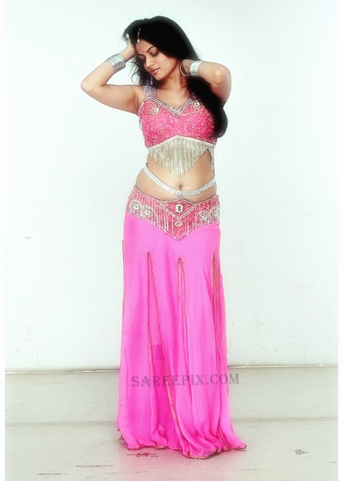 Action-3D-heroine-Sneha-ullal-lehenga-photoshoot