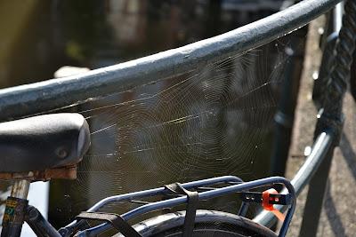 kerékpár szervíz Debrecen