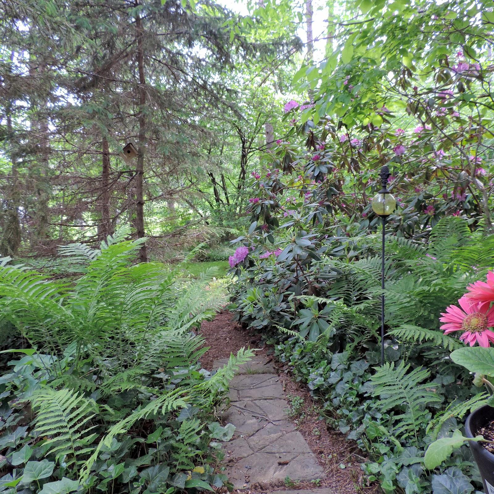 the northern new york gardener backyard bliss or not