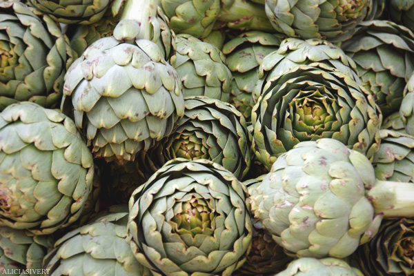 aliciasivert, alicia sivertsson, Le Nebourg, market day, kronärtskocka, grönsaker, grönsak, artichoke, vegetables