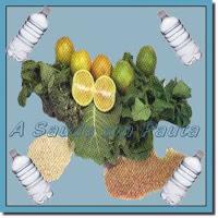 Os sais minerais necessários para a nossa sobrevivência são adquiridos com uma alimentação variada e saudável