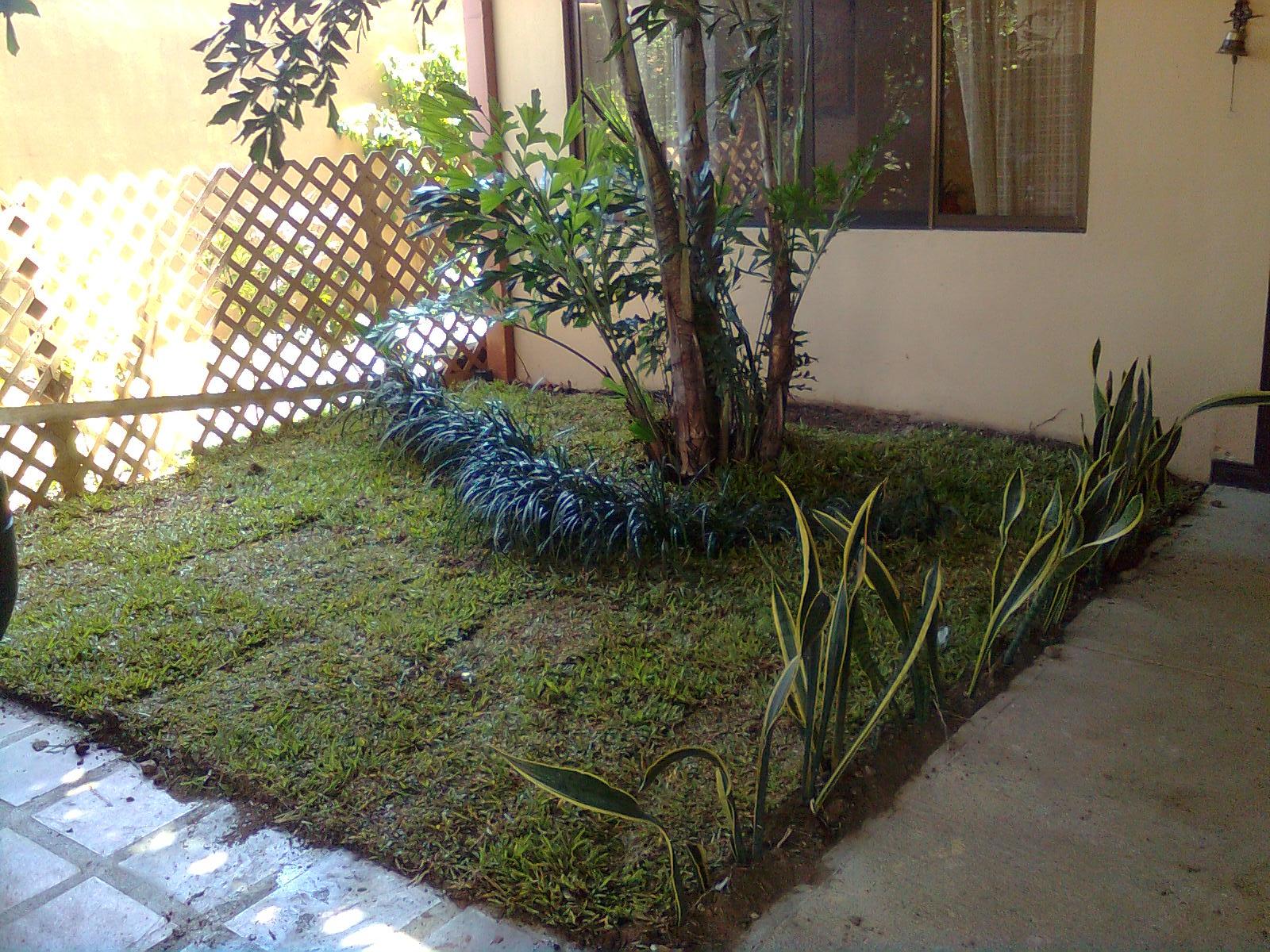 Mantenimiento y dise o de jardines decoraci n entrada for Decoracion jardin seco