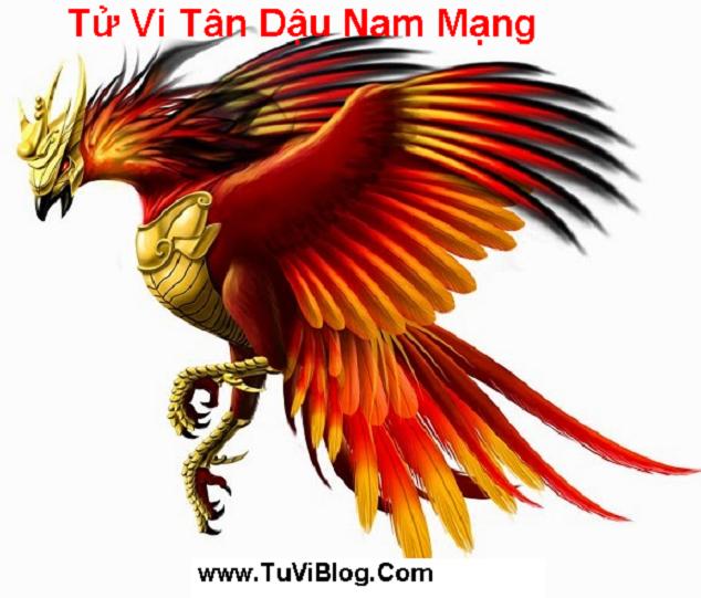 Tu Vi Tan Dau Nam Mang