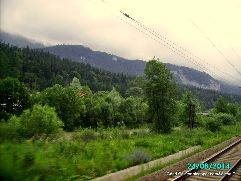 """From a blink of eye - Along the northwest part of the country on the railways, """"a trip road""""."""