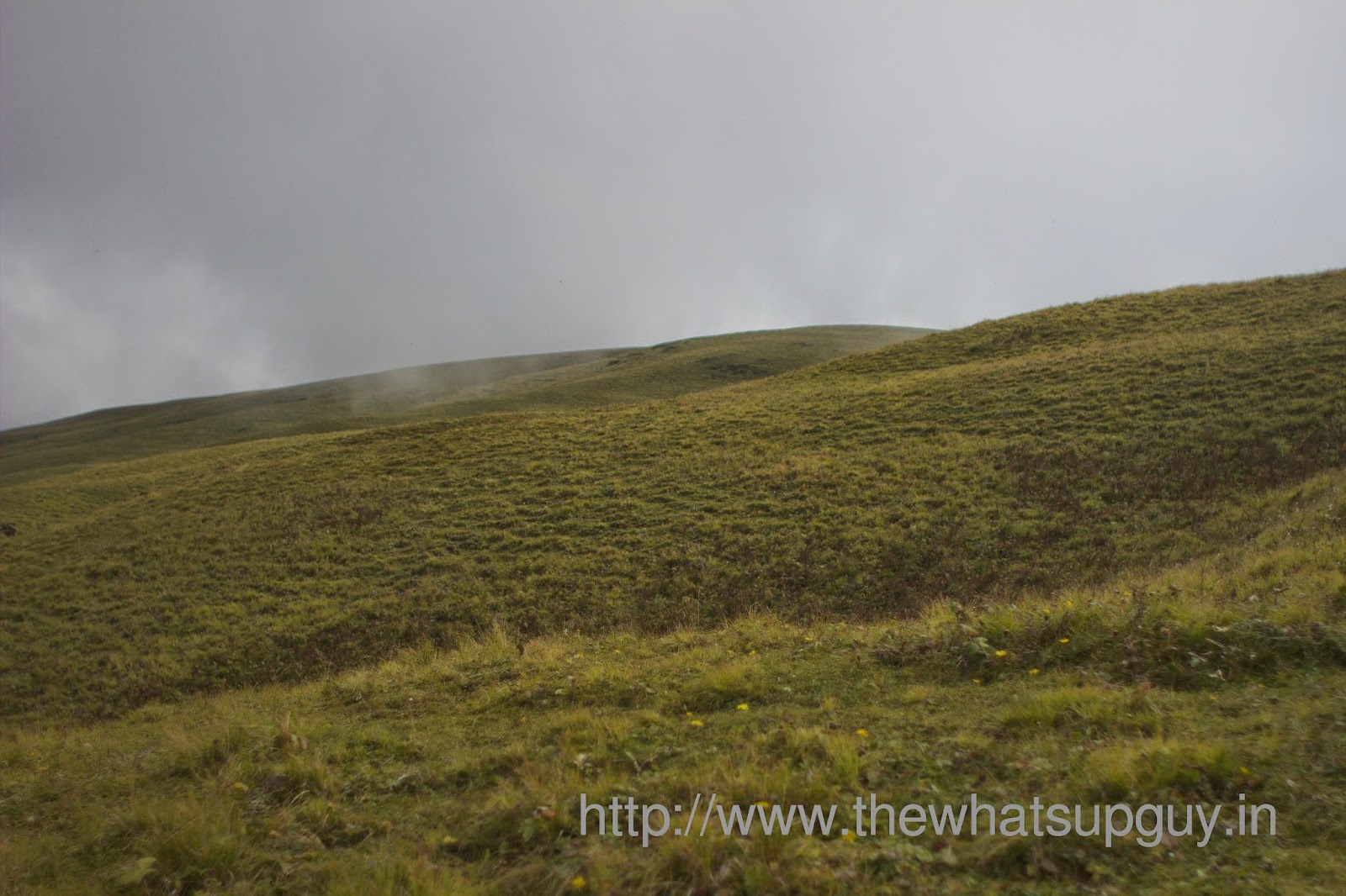 Windows-Xp-Wallpaper-Ali-Bugyal-Roopkund-Trek-With-India-Hikes-Day-2