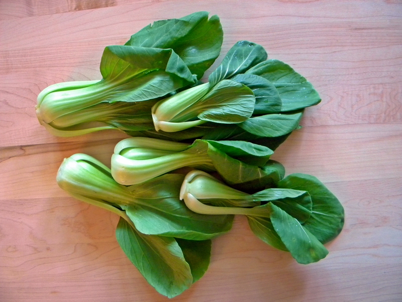Table BABY BOK CHOY quot THE CUTENESS QUOTIENT quot AND AN EASY SOUP