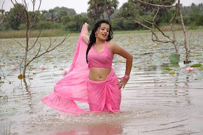 roopika spicy @ senkadu movie