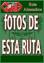 RUTA ALMENDROS 2013