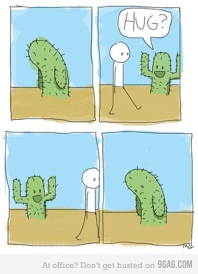 Forever Alone Cactus