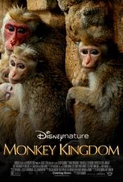 Monkey Kingdom | Bmovies