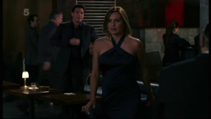 Especially Heinous: 272 Views of Law & Order SVU